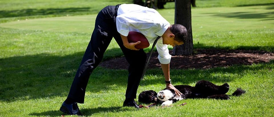 Obama On The Front Lawn