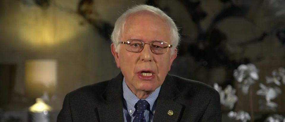 Sanders: Rural Vermont Gun Shops Should Not Be Held Liable, But Gun Manufacturers Should [screen shot ABC]