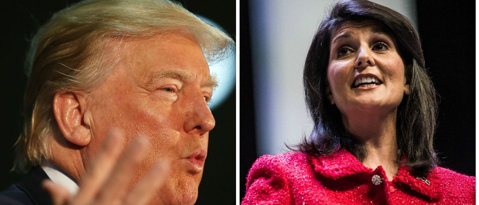 Trump Responds To Nikki Haley: 'If I Weren't Running, She'd Be In My Office Asking Me For Money' [images via Getty]