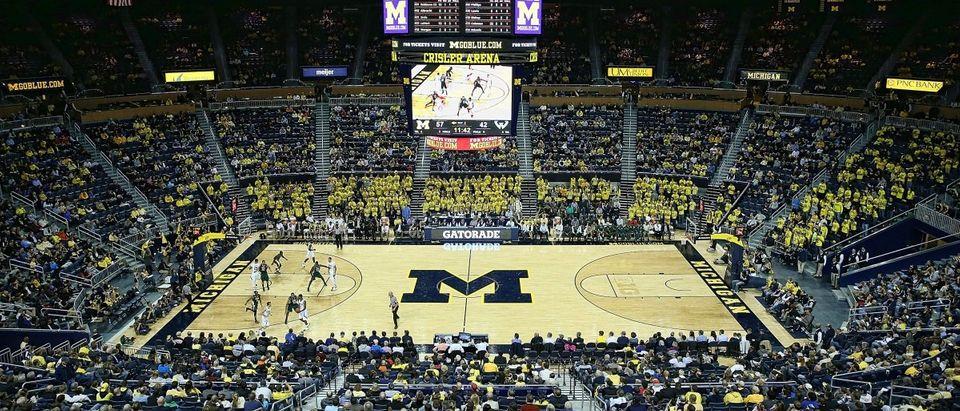 Wayne State v Michigan