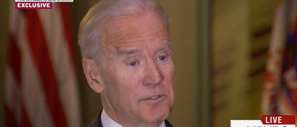 Joe Biden, screen shot MSNBC, The Rachel Maddow Show