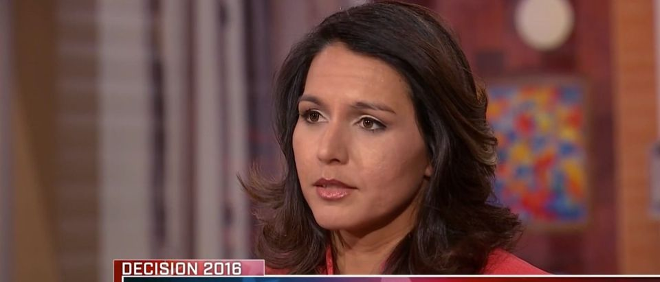 Rep. Tulsi Gabbard, NBC's 'Meet the Press' 2-28-2016