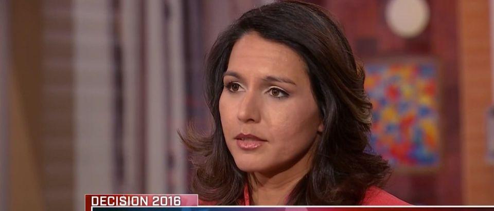 Rep. Tulsi Gabbard, NBC's 'Meet the Press' 2-28-2016
