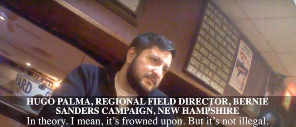 Sanders staffer admits using false address to vote (YouTube/Project Veritas)