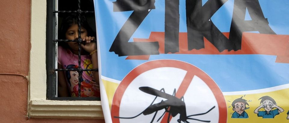 A woman looks on next to a banner as soldiers and municipal health workers take part in cleaning of the streets, gardens and homes as part of the city's efforts to prevent the spread of the Zika virus vector