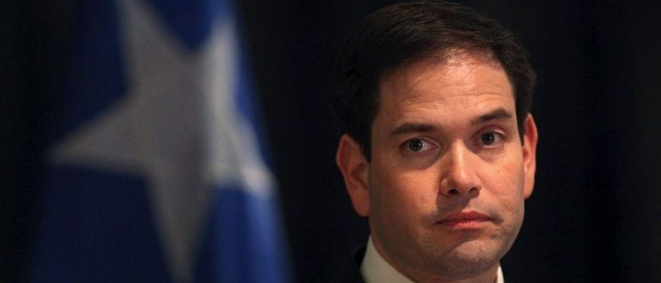 Republican U.S. presidential candidate Florida Senator Marco Rubio campaigns in Toa Baja