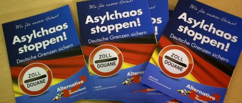Brochures of the AFD are pictured during a rally for the upcoming Saxony-Anhalt state elections in Bitterfel