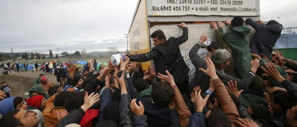 Migrants try to get products from a truck at a makeshift camp on the Greek-Macedonian border near the village of Idomeni, Greece March 10, 2016. REUTERS/Stoyan Nenov
