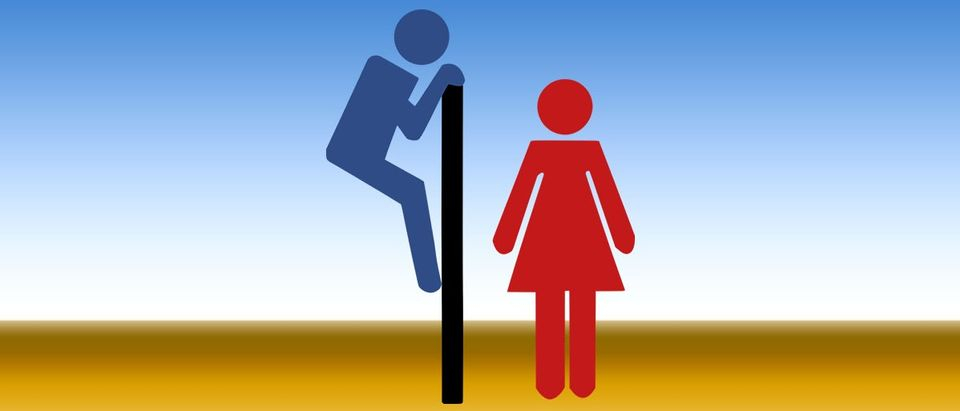 Rule lets students pick their own bathroom (Creative Commons photo, Public domain)