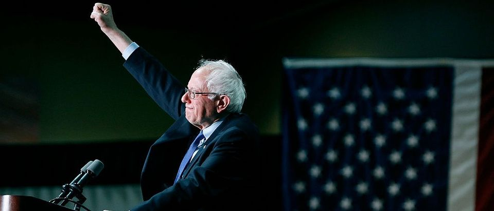 PHOENIX, AZ - MARCH 15: Democratic presidential candidate Sen. Bernie Sanders (D-VT) speaks to a crowd gathered at the Phoenix Convention Center (Photo by Ralph Freso/Getty Images)
