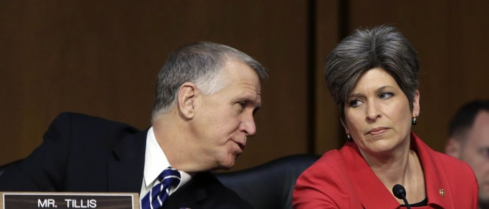 Newly-elected United States Senator Joni Ernst listens to fellow Senator Thom Tillis at the Senate Armed Services Committee in Washington