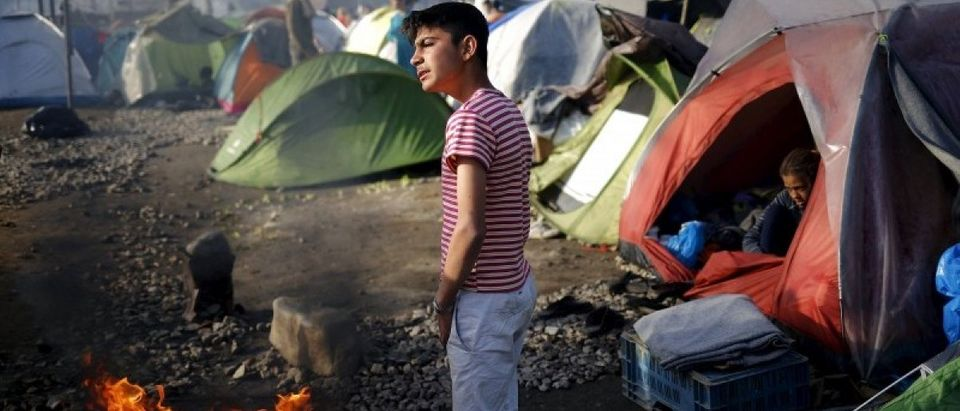 Boy warms up at a fire at a makeshift camp for migrants and refugees at the Greek-Macedonian border near the village of Idomeni