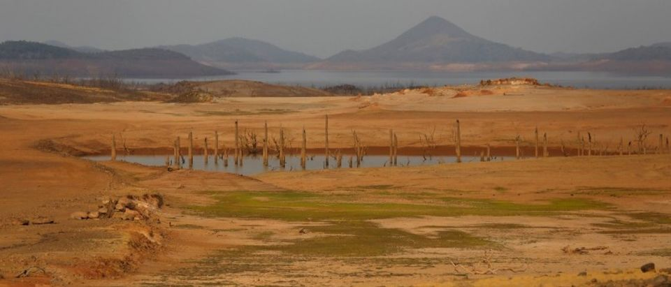 The Wider Image: Drought-hit Venezuela waits for rain