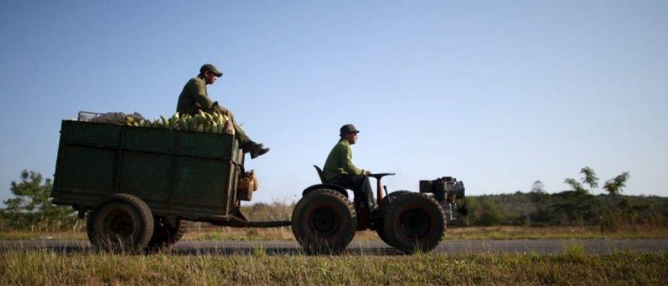 Farmer Wilber Sanchez drives a tractor near San Antonio de los Banos in Artemjsa province Cuba