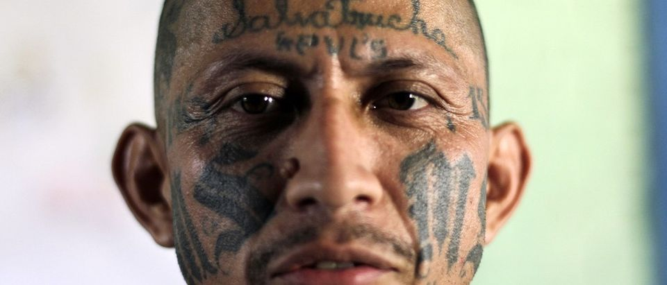 Carlos Tiberio Ramirez, one of the leaders of the Mara Salvatrucha (MS-13) gang poses while attending the Day of the Virgin of Mercy celebrations at the female prison in San Salvador