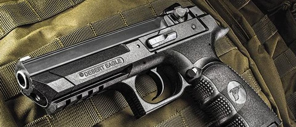 PDW_magnum-research-baby-desert-eagle-iii