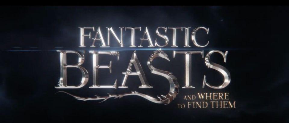 Harry Potter Prequel (Credit: Screenshot/Youtube Warner Bros. Pictures)