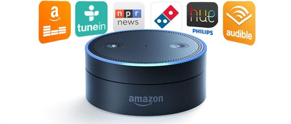 Only Alexa can get you an Echo (photo via Amazon)