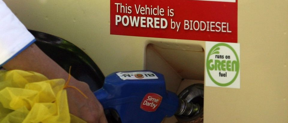 Biodiesel is pumped into a car at the Sime Darby Biodiesel Plant in Carey Island, outside Kuala Lumpur