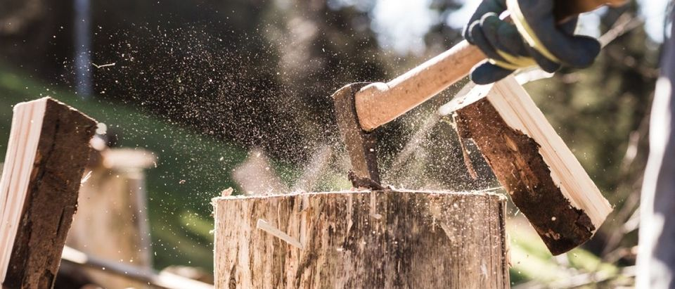Detail of two flying pieces of wood on log with sawdust. Man is chopping wood with vintage axe. Frozen moment. (Jan Faukner/Shuttershock)