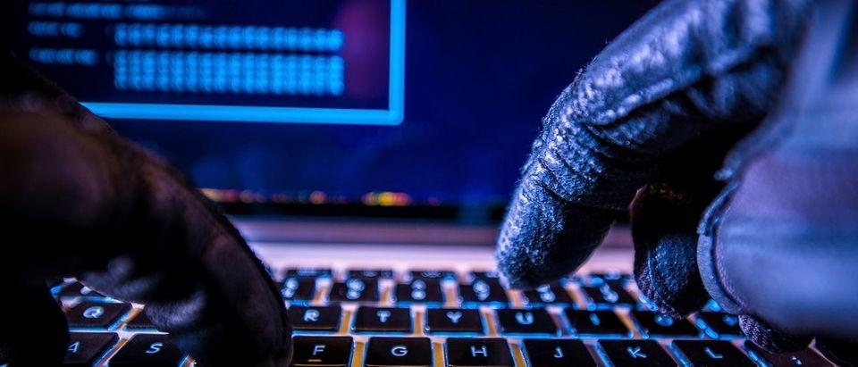 Hacker looking through data (Shutterstock)