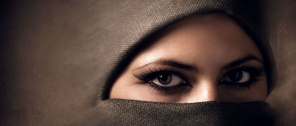 A woman is in a hijab. Shutterstock, Ihor Voloshyn