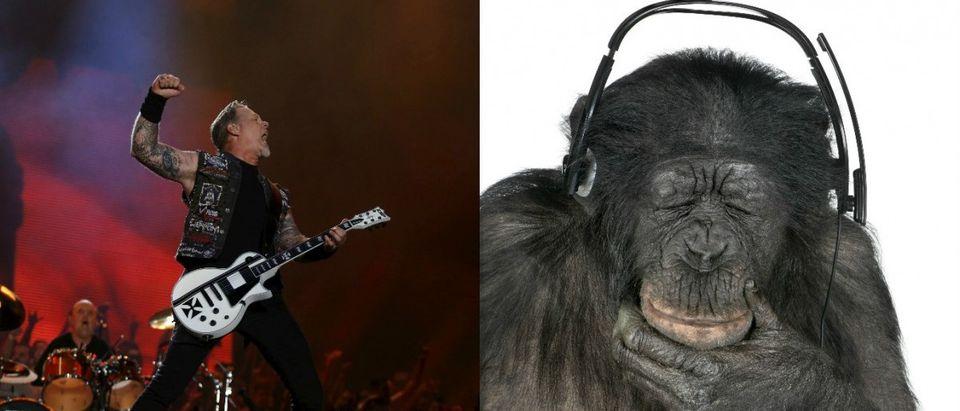 James Hetfield of Metallica and a monkey.