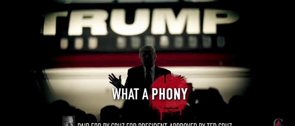 Cruz Political Ad