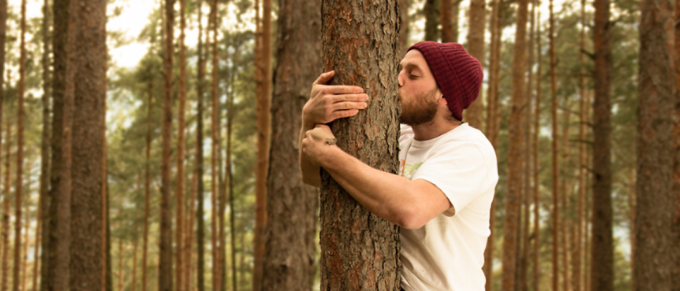 Hugging trees to support nature (Shutterstock/Gidl)