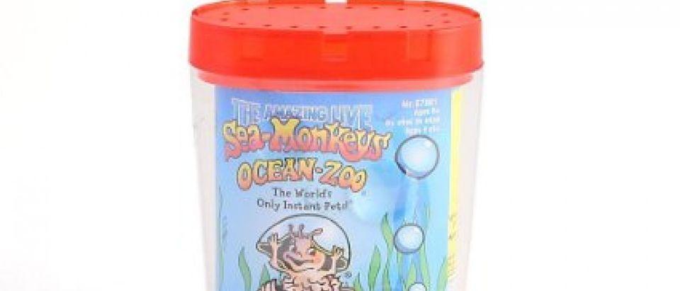 May 16 is National Sea Monkey Day (Photo via Amazon)