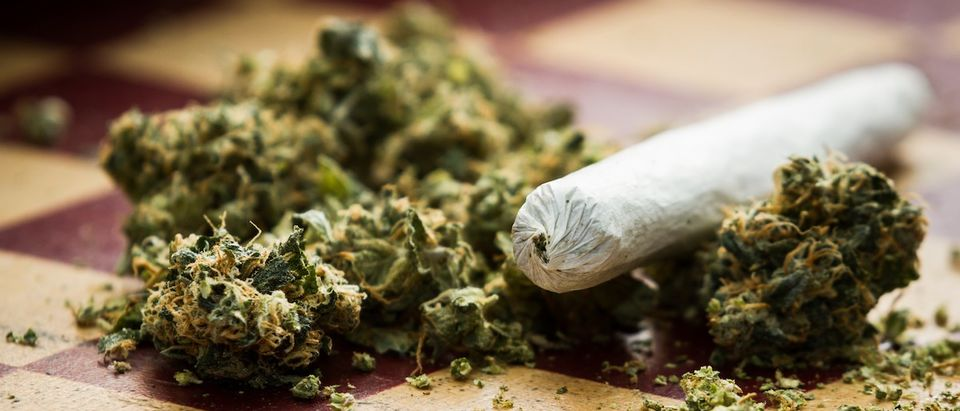 Closeup of marijuana joint and buds on a checkerboard table with (Credit: Shutterstock/Wollertz)