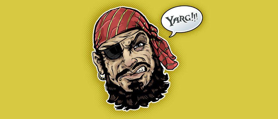 pirate Shutterstock/Christopher Brewer