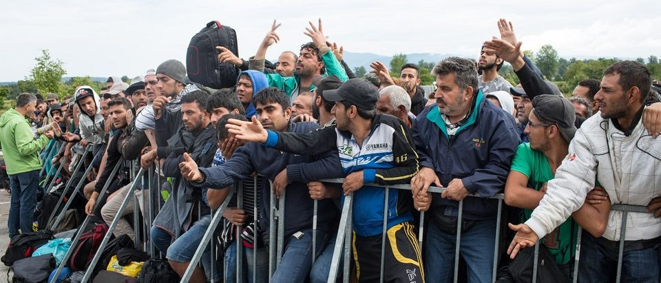 Refugees (Shutterstock)