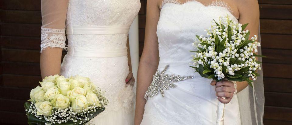 Two brides, cunaplus, Shutterstock