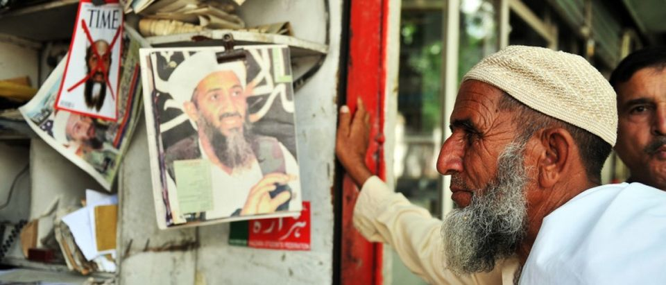 Man looks at bin Laden cover