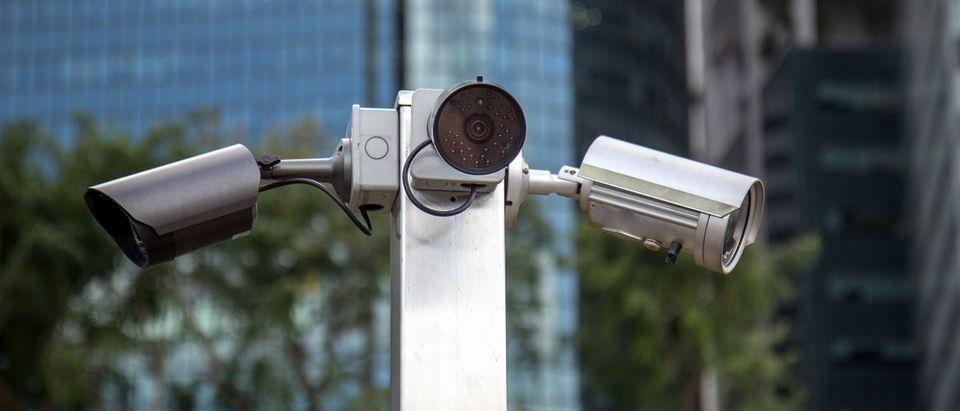 Cameras (Shutterstock)
