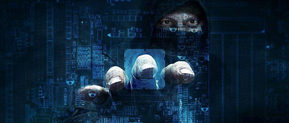 Hacker (Shutterstock)
