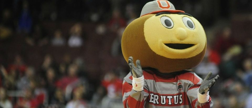 THE Ohio State University: We get it, buckeyes are an Ohio thing. But this mascot is still pretty weird-looking. (Photo: Getty Images)
