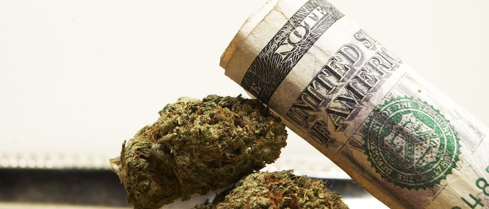 Legal Marijuana Shutterstock/Doug Shutter