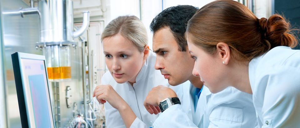 Group of scientists working at the laboratory (Shutterstock/Alexander Raths)