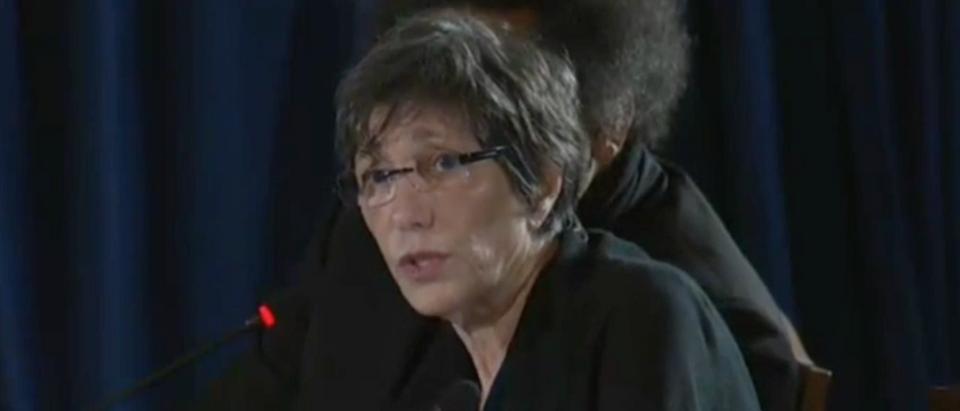 DNC platform committee member Bonnie Schaefer says she is against all guns. June 8, 2016. (Youtube screen grab)