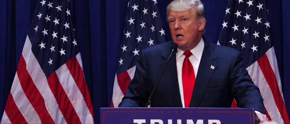 Donald Trump (You Tube/Donald Trump For President Screen Capture 6/16/15)