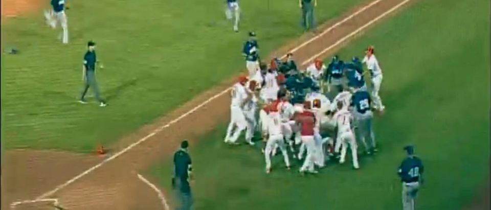 baseball brawl (Credit: Screenshot/MLB Video)