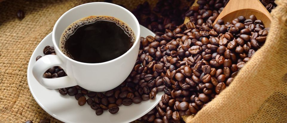 Coffee (Shutterstock/amenic181)