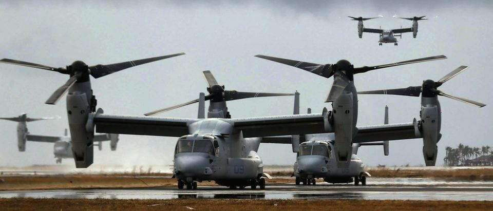 Four Ospreys from the U.S. Navy Seal ship Charles Drew arrive or taxi on the tarmac of the Tacloban airport