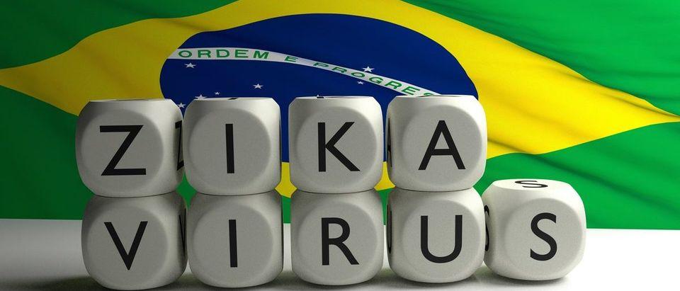 Words ZIKA VIRUS written on letters with brazilian flag in background. Zika virus in Brazil. 3D render. (Shutterstock/Nikola93)