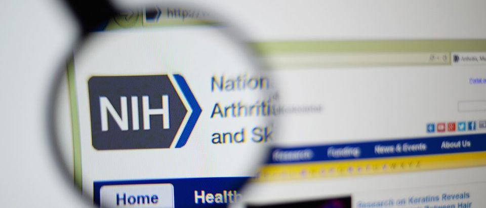 National Institutes of Health Spends Around $30 Billion Each Year On Research