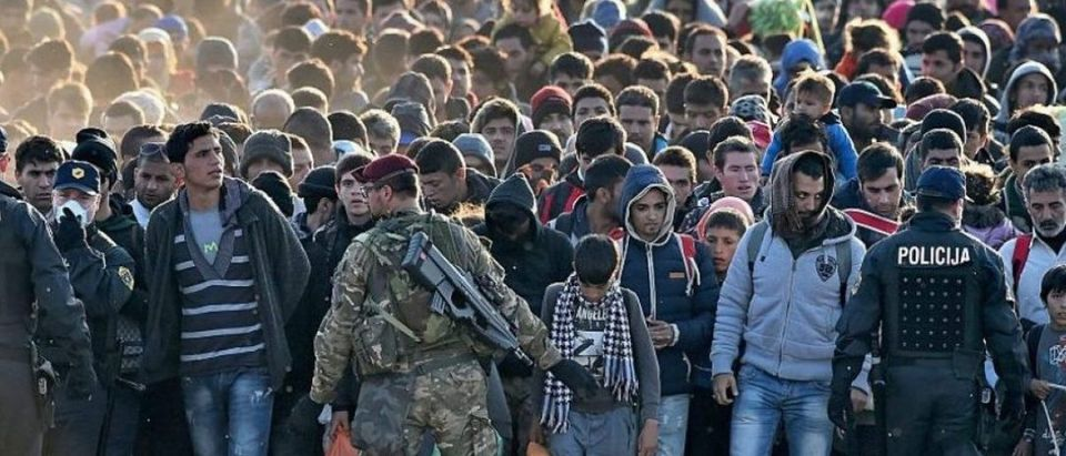 Refugee Crowd Gathers in Europe.