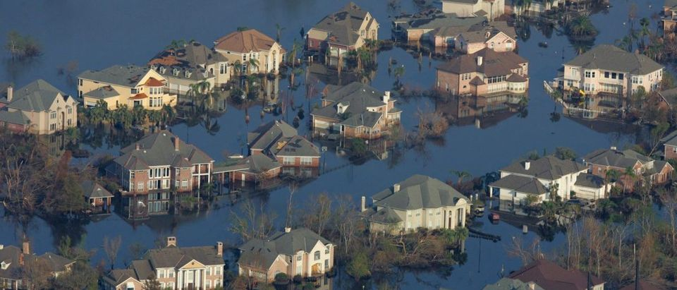 Neighborhoods are flooded with oil and water two weeks after Hurricane Katrina went though New Orleans.