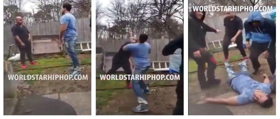 Backyard brawl (YouTube)